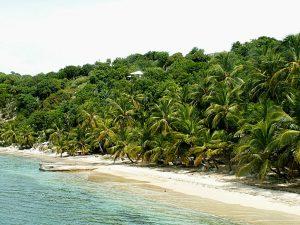 Visiting The Caribbean